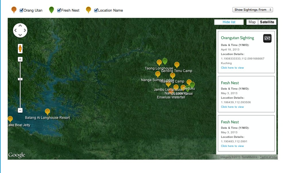 Borneo Adventure Orangutan Sightings & Nest Map (Interactive)